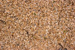 Pebble Beach da costa espanhola Fotografia de Stock Royalty Free