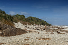 Pebble Beach de Tauparikaka Marine Reserve, Haast, Nova Zelândia fotos de stock royalty free