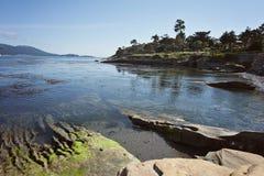 Pebble Beach längs den Monterey fjärden Arkivfoto