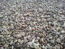 Pebble Beach mit grünem Kiesel in der Mitte Stockfotografie
