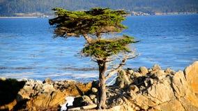 Pebble Beach Monterey California metrajes