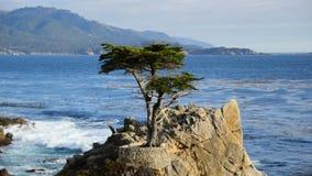 Pebble Beach Monterey California almacen de video