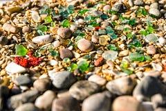 Pebble Beach Muscheln und Ozeanfelsen Seestern- und -rollensteine Lizenzfreies Stockfoto