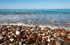 Pebble Beach på havet Royaltyfri Fotografi