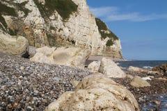Pebble Beach på Jurassic kust Arkivbild