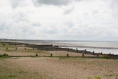 Pebble Beach på Whitstable Royaltyfria Bilder