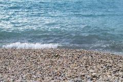 Pebble beach Royalty Free Stock Photos