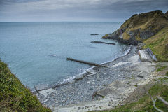 Pebble Beach skriar in, Irland Arkivfoton