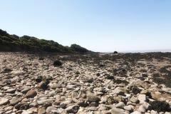 Pebble beach, Somerset. Pebble beach and coastline near Portishead,Somerset Stock Photo