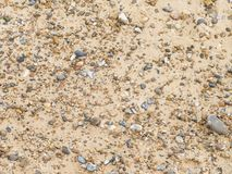 Pebble beach in summer Royalty Free Stock Photography