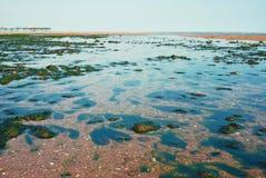Pebble beach Stock Photos