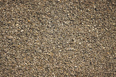 Pebble beach texture. Small sea stones on a sunny day Stock Image