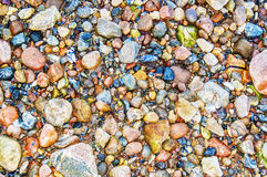 Pebble beach Texture Royalty Free Stock Photography