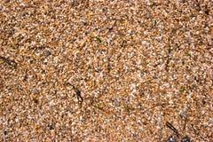 Pebble Beach von der spanischen Küste lizenzfreie stockfotografie