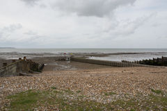 Pebble Beach at Whitstable Stock Photos