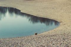 Pebble- Beachbucht, unfruchtbar und leer lizenzfreies stockfoto