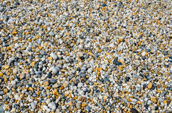 Pebble- Beachhintergrund Stockfotos