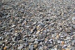 Pebble. Of the Black Sea Royalty Free Stock Photos