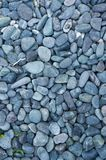 Pebble black stone Stock Image