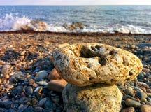 Pebble on coast Royalty Free Stock Photos