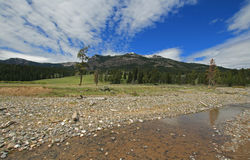 Pebble Creek under cumulus cirrus cloud skies at the east end of the Lamar Valley in Yellowstone National Park in Wyoming Stock Image