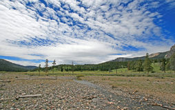 Pebble Creek under cumulus cloud skies at the east end of the Lamar Valley in Yellowstone National Park Royalty Free Stock Image