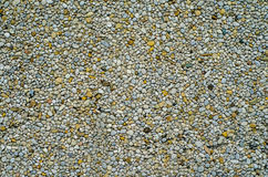 Pebble Dash Backgound Texture Royalty Free Stock Photo