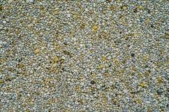 Pebble Dash Backgound Texture. Abstract Backgound Texture Of Pebble Dash Wall royalty free stock photo