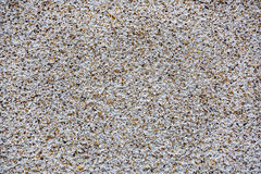 Pebble Dash Background Royalty Free Stock Image