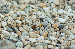 Pebble Royalty Free Stock Image
