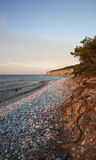 Pebble limestone beach during sunset. Limestone beach with a high cliff in the background on the island of Gotland in the Balticsea in Sweden Royalty Free Stock Photography