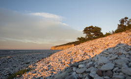 Pebble limestone beach during sunset. Limestone beach with a high cliff in the background on the island of Gotland in the Balticsea in Sweden Stock Photo