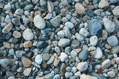 Pebble on mountain river Royalty Free Stock Image