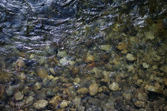Pebble in norway mountain river. Scandinavia Royalty Free Stock Images