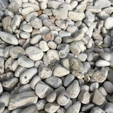 Pebble. Near rovinj - istria - croatia Stock Image