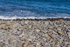 Pebble on the ocean island of Madeira. Marine debris Stock Photos
