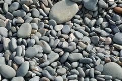 Pebble arkivbild