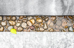Path of pebble in water framed with stone. Pebble path in water framed with stone boards. Bright spot on grey stone - small yellow leaf. Exterior design and Royalty Free Stock Photo