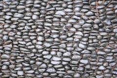 Pebble pavement in a park on Madeira Stock Photography