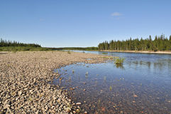 Pebble river bed. River Polar Urals on a Sunny summer day Royalty Free Stock Photo