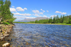 Pebble river Nakta on the Putorana plateau. Stock Photos