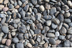 Pebble Rock Stock Photo