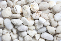 Pebble rock and stone Stock Images