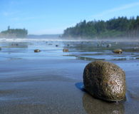 A pebble on the Ruby beach. A pebble is exposed by a low tide on the Ruby Beach near Forks, WA. Summer 2009 Stock Images
