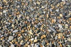 Pebble on the sea coast Stock Photos