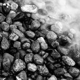 Pebble sea Stone. Texture in black and white Royalty Free Stock Photos