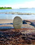 Pebble on the Seashore Royalty Free Stock Photos