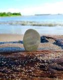 Pebble on the Seashore Royalty Free Stock Photos