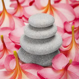 Pebble stack and Flowers Stock Photos