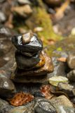 Pebble stack in the forest. Close-up detail of a stack of wet pebbles with a coin on top, on a rocky forest floor. Shinto religion and nature concept Stock Photos